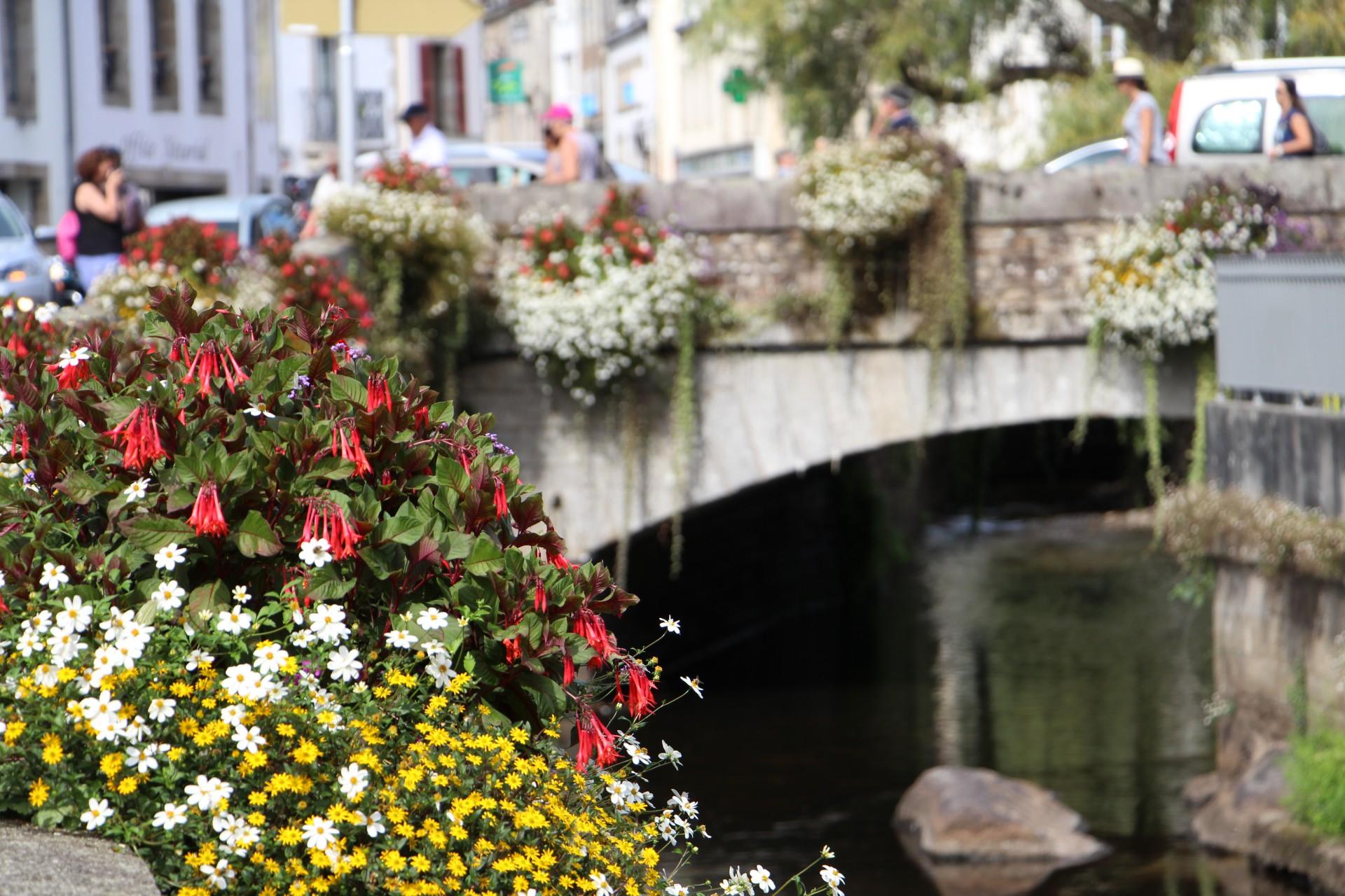 Blumen am Ufer in Pont Aven in der Bretagne