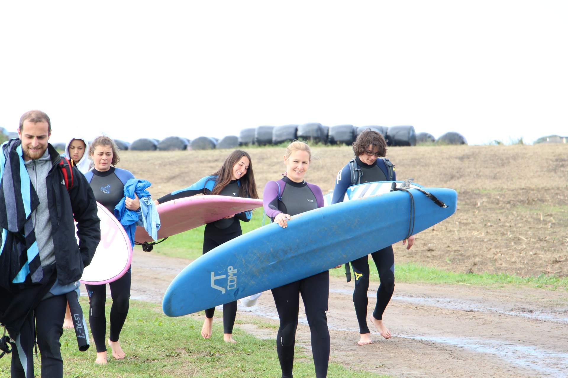 Langre Kuhweiden und Surfer